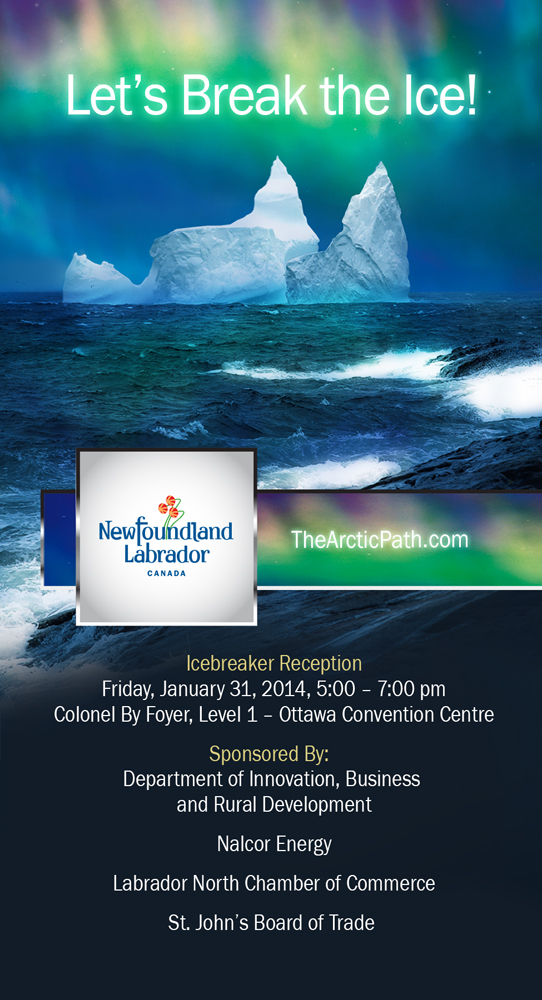 northern-lights-2014_networking-session