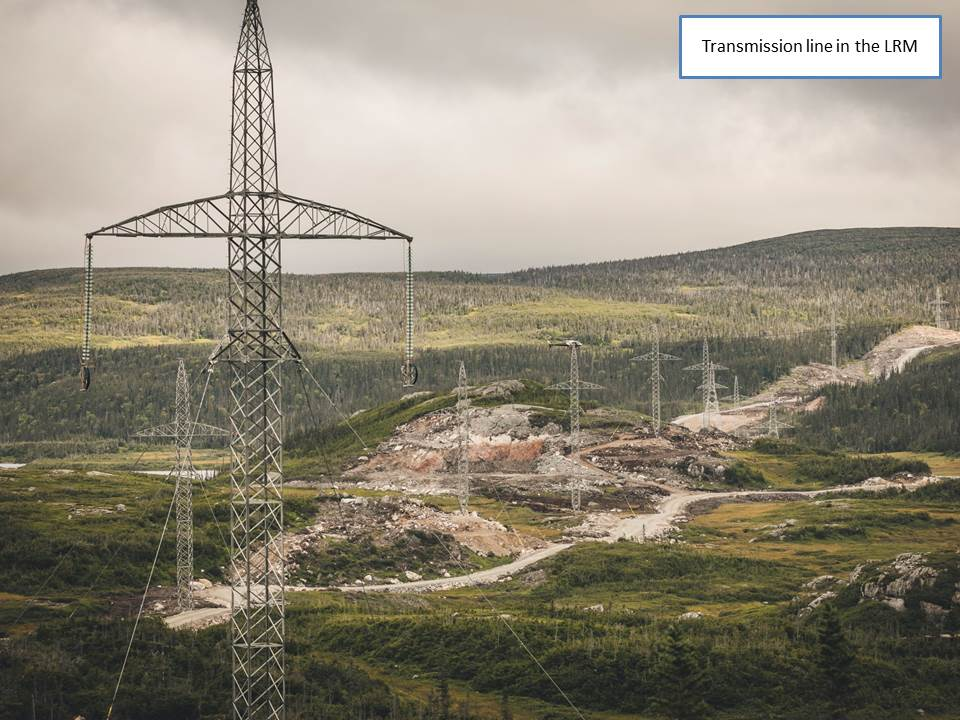 Transmission line in the LRM